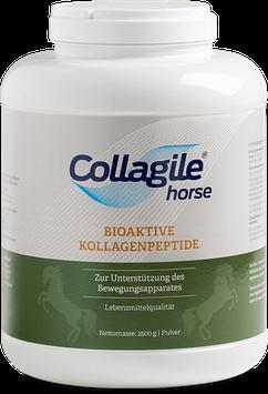 Collagile® horse