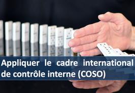"""1 accès pour la formation """" Appliquer le cadre international de contrôle interne (COSO) """""""