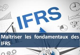 """1 accès pour la formation """" Maîtriser et contrôler les fondamentaux des normes IFRS """""""