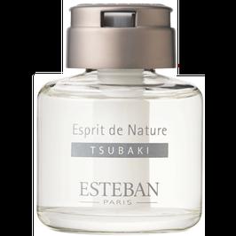 Hương thơm Esteban Cây hoa trà