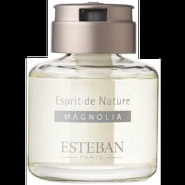 Hương thơm Esteban Cây mộc lan