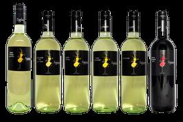6 x 0,75l Weinprobierpaket