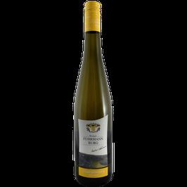 2018er Chardonnay dry