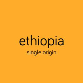 ethiopia (washed)