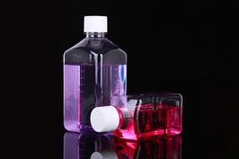 PET-Medienflaschen in quadratischer Form