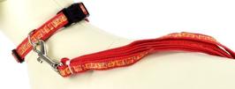 Set Halsband mit Leine