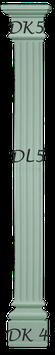 DLS 5