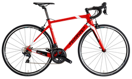 WILIER GTR TEAM PATINS 2021