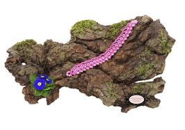 Bracelet Aerin rose foncé et perles de rocaille rose nacré