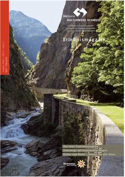 ViaStoria – Magazin Uri / Tessin