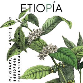 CAFÉ DE ETIOPÍA SIDAMO