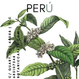 CAFÉ ECOLÓGICO DE PERÚ