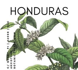 CAFÉ ECOLÓGICO DE HONDURAS