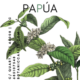 CAFÉ DE PAPÚA