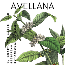 CAFÉ AROMATIZADO AVELLANA
