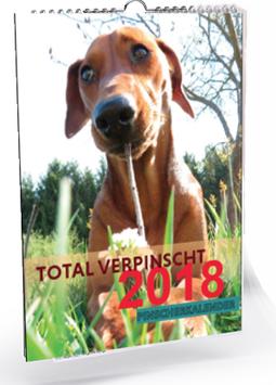 Pinscher Wandkalender 2018