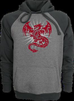 Hoodie Drachen2 2 color