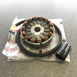 Complete racing alternator Ducati