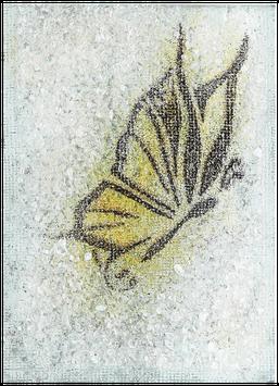 GO-2677 Schmetterling