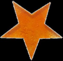 GS-2 Glasstern Orange