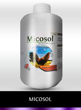 Micosol 1 L