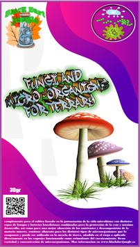 Hongos y microorganismos para terrario