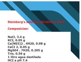 SUERO: solucion de Steinberg's -solo uso  por veterinario o tener conocimiento-