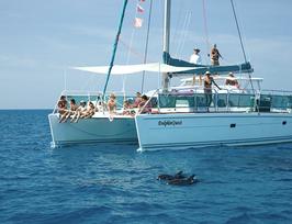 """1 Person im DZ - Teilnahme am """"FLOW of LIFE"""" Delphin Retreat, Bahamas - nur Doppelbelegung - nimm deinen Partner/ deine Freundin... mit ❤️❤️"""