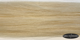 Tape Extensions T12.1 hell aschblond