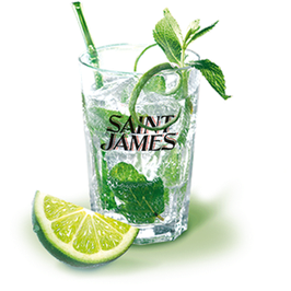 VERRE MOJITO SAINT JAMES