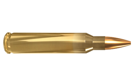 Lapua .223 Remington
