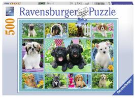 Puzzel Snoezige Hondjes: 500 stukjes