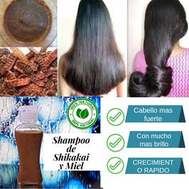 Shampoo - Limpiador de Miel y Shikakai - Brillo e Hidratacion