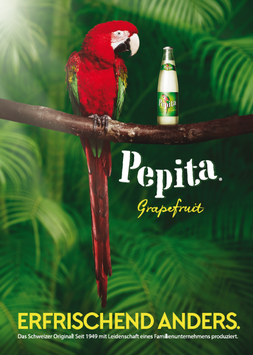 Pepita-Plakat 2016 II