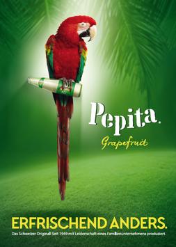 Pepita-Plakat 2016 I