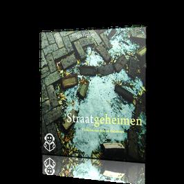 Straatgeheimen (audioboek)