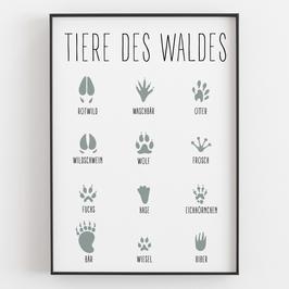 """""""TIERE DES WALDES"""""""