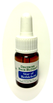 Star of Betlehem 10ml