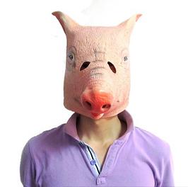 Schwein B