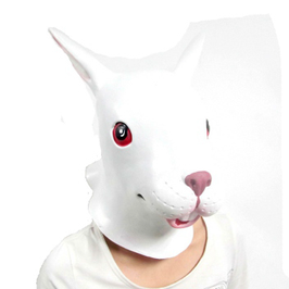 Hase weiss