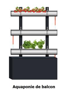 système d'aquaponie pour balcon ou terrasse