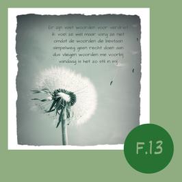 F13. woorden voor verdriet