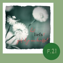 F21. knuffel