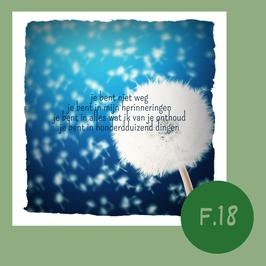 F18.  Honderdduizend dingen