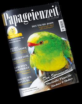 Papageienzeit 49