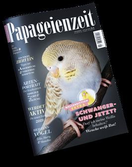 Ausgabe 41 - Bestellung als Einzelausgabe oder im Abonnement Ihrer Wahl