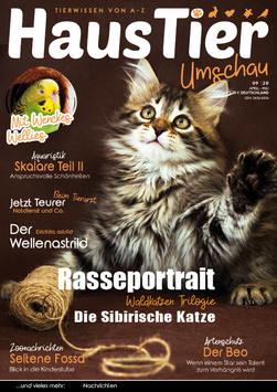 HaustierUmschau 09 - eMagazin/PDF