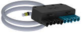 47  Stecker 10-polig X-Plug