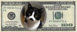 自分の顔でお札シリーズ2  アメリカ紙幣
