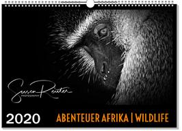 WANDKALENDER: ABENTEUER AFRIKA | WILDLIFE 2020